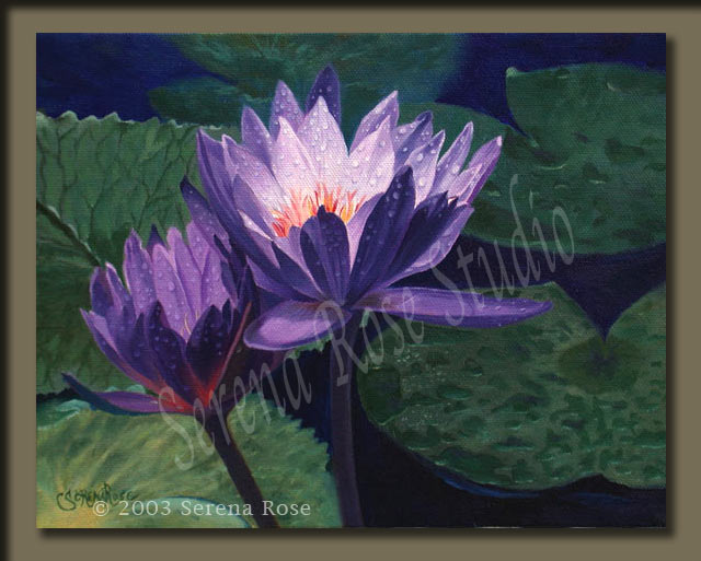 oil painting by Serena Rose, artwork of two water lily blooms with morning dew